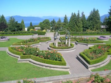Rose garden at UBC, adjacent to the Peter Wall Institute for Advanced Studies